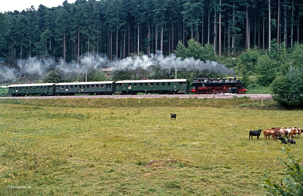 https://krolopfoto.de/railpix/images/sonderfahrten/198107266.jpg