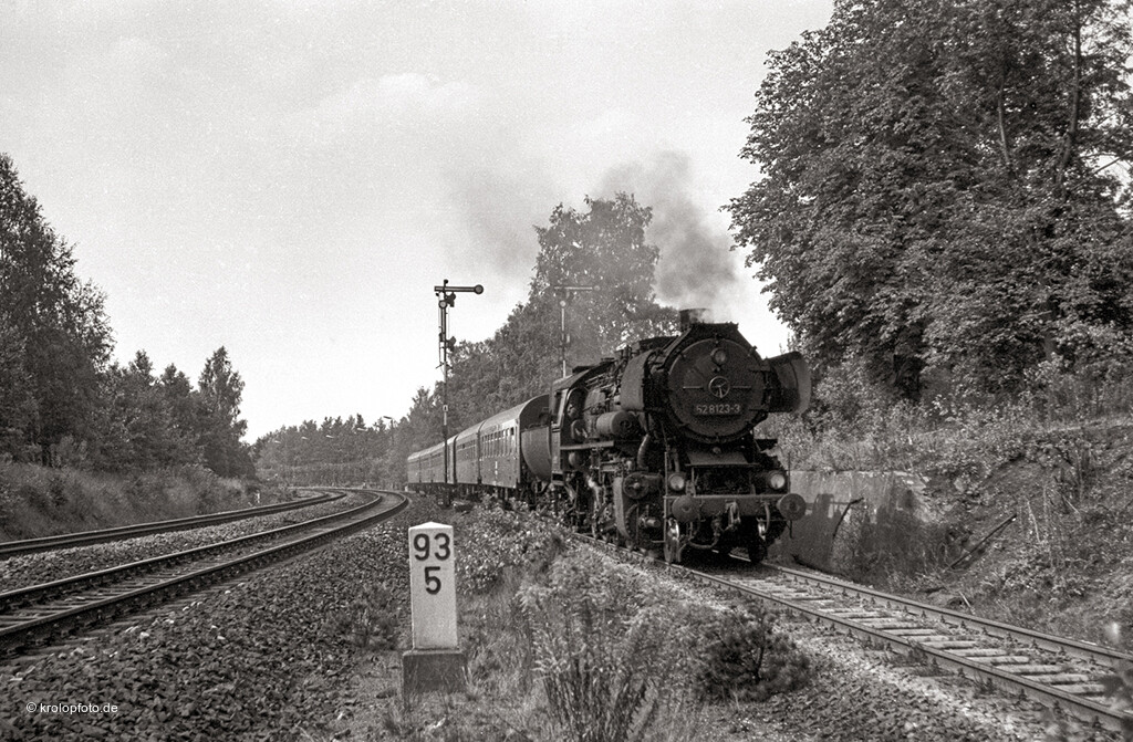 https://krolopfoto.de/railpix/images/sw/1982082402.jpg
